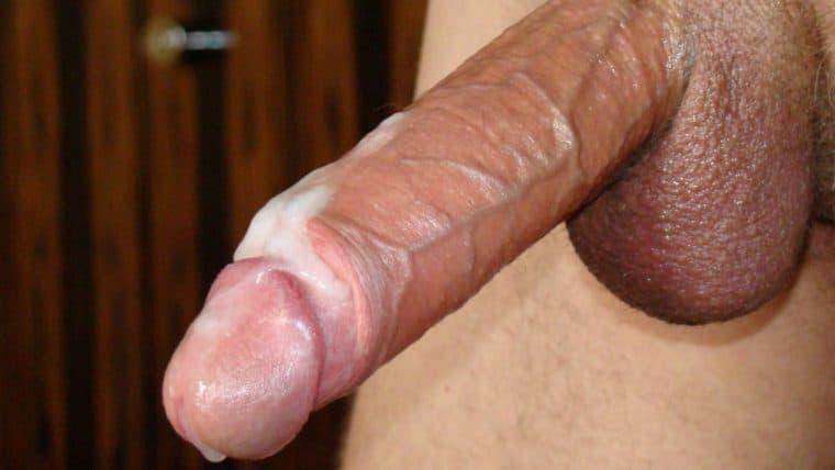 Gefunden Schambehaarung im Penis