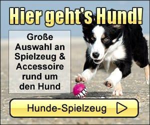 Hunde Spielzeug