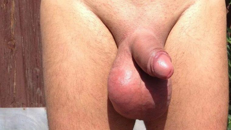pornofilm hoden abbinden technik